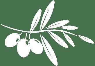 parsleydelight_logo